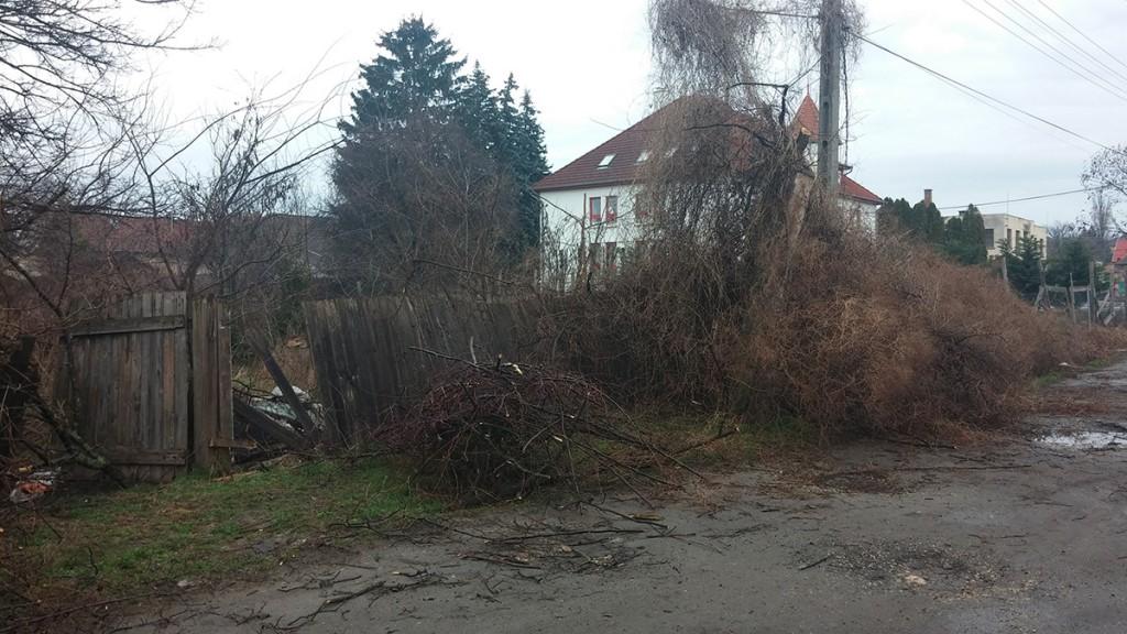 A gazdátlan ingatlannak cseppet se szimpatikus a környezete. Fotó: hulladekvadasz.hu