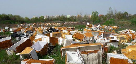 Terebesi erdő, maga a hulladékpokol hűtőtemető