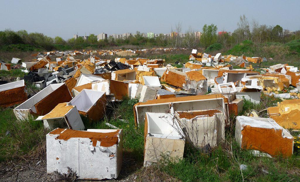 A Terebesi erdő végeláthatatlan hűtőtemetője. / Fotó: hulladekvadasz.hu