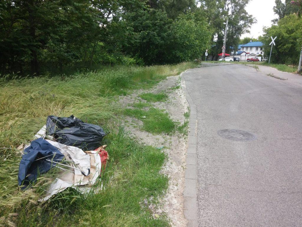 A Szederkény utca mentén illegálisan elhelyezett szemét. Fotó: hulladekvadasz.hu
