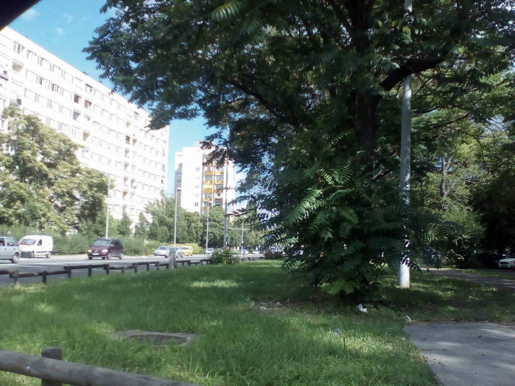 A korábbi bejelentési helyszín megtisztítva. Fotó: hulladekvadasz.hu