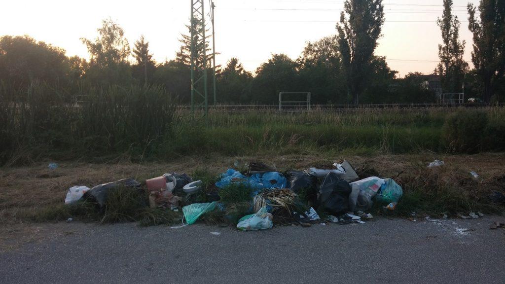 Gárdony, Daru utca állapota. Fotó: hulladekvadasz.hu