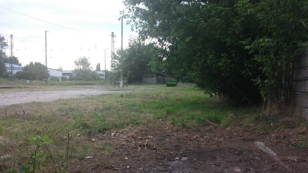 Rákosszentmihály vasútállomás területének megtisztított képe. Fotó: hulladekvadasz.hu