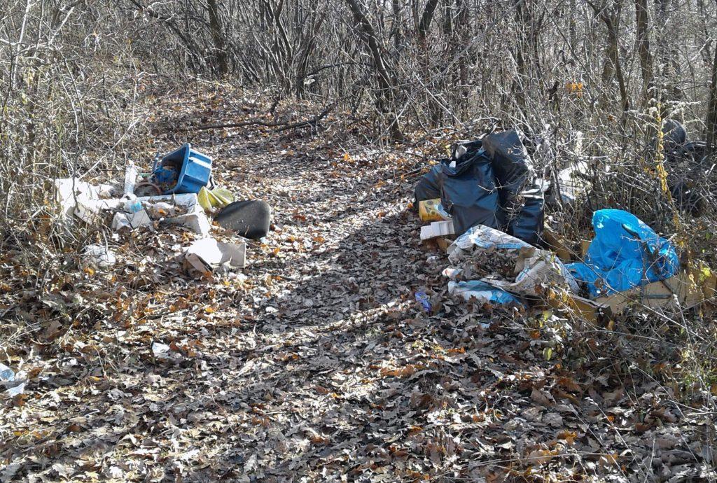 Az illegális hulladéklerakat a gödöllői erdőben. Fotó: hulladekvadasz.hu