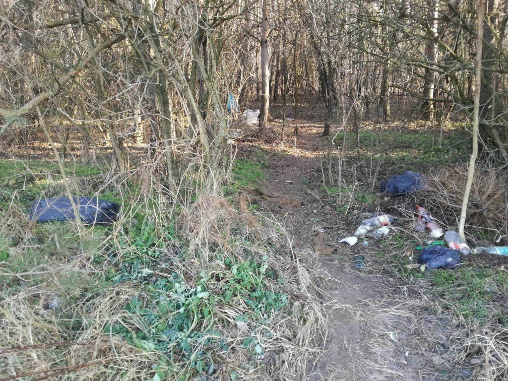 A vecsési erdő bejáratában is ömlesztve van a kommunális hulladék. Fotó: hulladekvadasz.hu