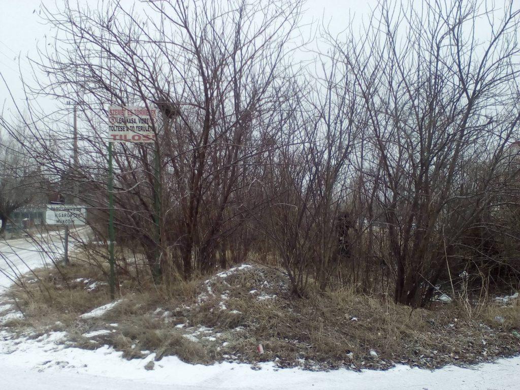 KRESZ központ A kihelyezett táblát jól láthatóan benőtte a növényzet. Fotó: hulladekvadasz.hu