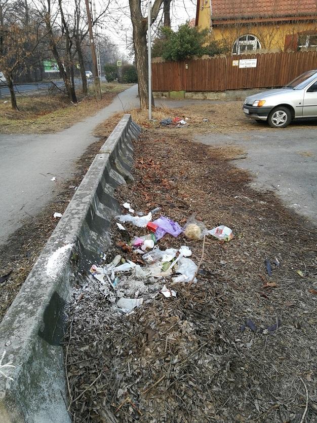 A bejelentés az Esze Tamás utca végéből érkezett. / Fotó: hulladekvadasz.hu