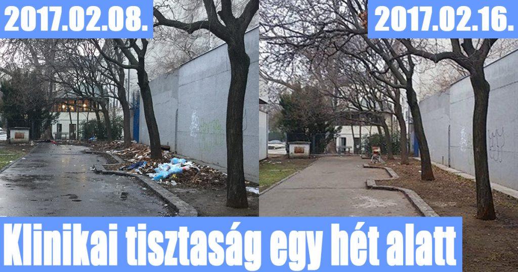 Józsefvárosi takarítás mindössze egy hét alatt történt meg. / Fotó: hulladekvadasz.hu