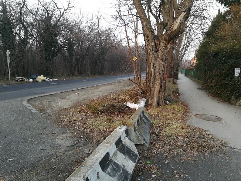 Gombamód szaporodó hulladéklerakásokkal a Határ úton élők nap, mint nap szembesülnek. / Fotó: hulladekvadasz.hu
