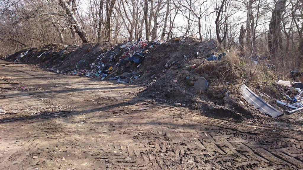 Vajon itt mi folyik? Szelektív újrahasznosítás? / Fotó: hulladekvadasz.hu
