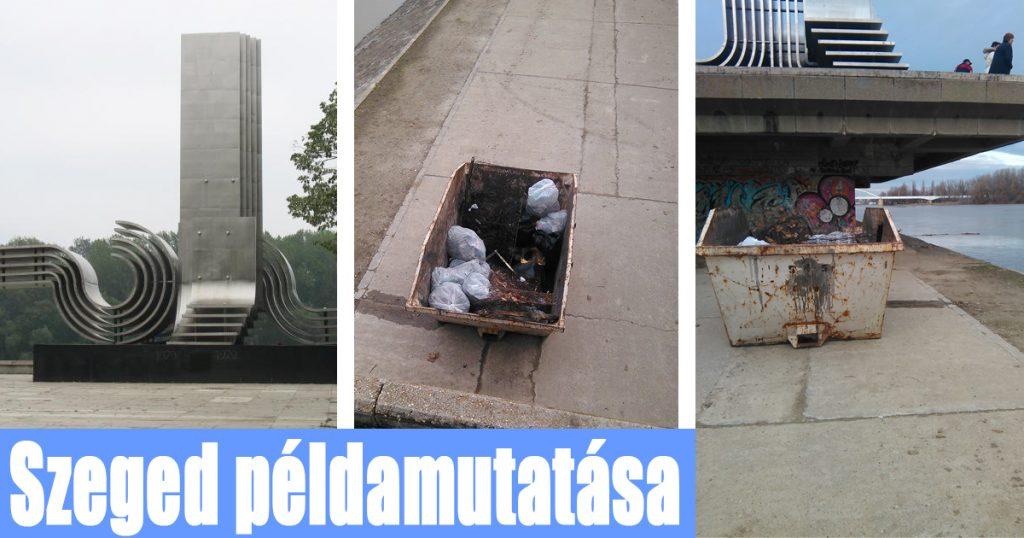 Szegedi takarításhoz összesen 3 napra volt szükség. / Fotó: hulladekvadasz.hu