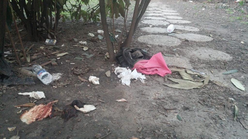 Hamzsabégi úti sétány jelenlegi állapota közegészségügyi problémákat mutat. / Fotó: hulladekvadasz.hu