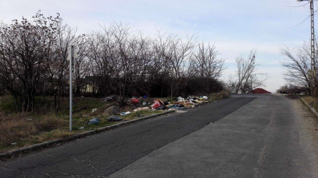 Az út mentén folyamatos az illegális hulladéklerakás. / Fotó: hulladekvadasz.hu