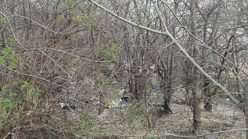 Hajléktalan lakk az erdő mélyén. / Fotó: hulladekvadasz.hu