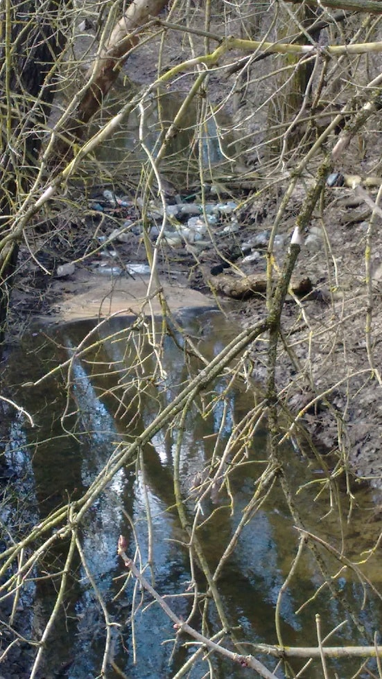 Lósi-patak hulladéktorlasza mindent meggátol. / Fotó: hulladekvadasz.hu