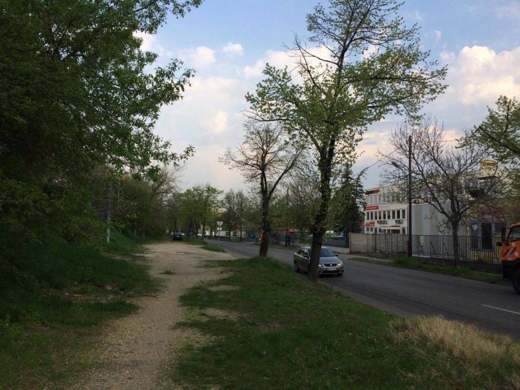 Mexikói út megtisztított helyszíne. / Fotó: hulladakvadasz.hu