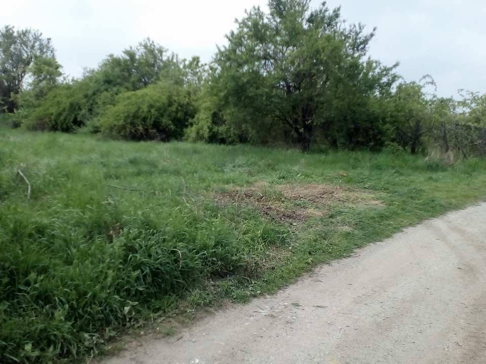 Diósd Önkormányzata Diósdon a Meggyes utca melletti illegális hulladéklerakat hűlt helye. / Fotó: hulladekvadasz.hu