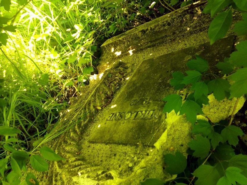 Bontott sírkő nyíregyházi természetvédelmi terület mellett. / Fotó: hulladekvadasz.hu