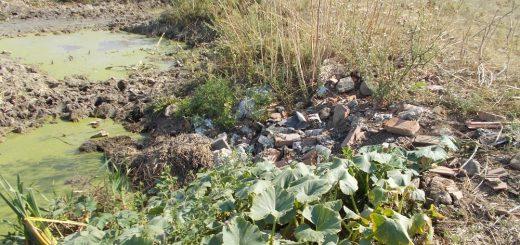 Gatály, Natura 2000-es terület szennyezése