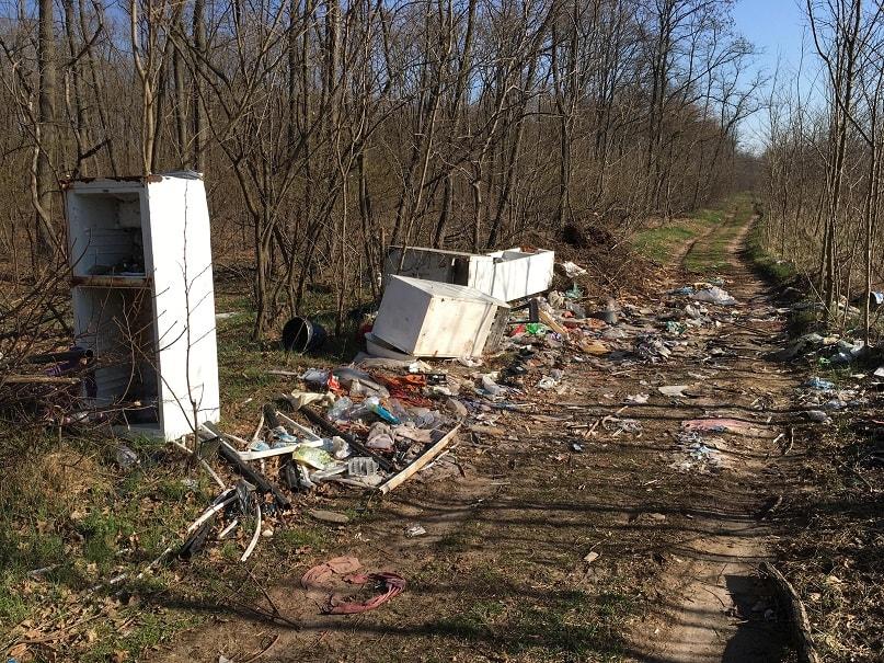 Hungarocontrol Zrt. melletti erdőszakaszon növekvő szemétáradat