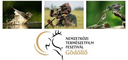 Nemzetközi Természetfilm Fesztivál 2018