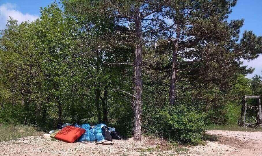 Csopak térségében erdőben lerakott hulladék (Frissítve)
