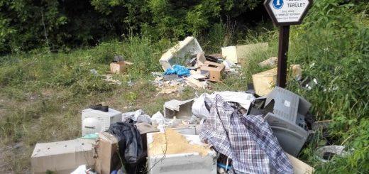 Természetvédelmi terület táblájánál hulladéklerakat a XVI. kerületben
