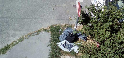 Tímár utca - Bécsi út sarkán cicaharc és hulladéklerakat Óbudán