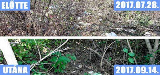 Eger Almagyar városrészén illegális hulladéklerakó (Frissítve)