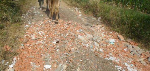 Kóka külterületi földútján építési hulladék