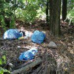 Pálmamajor szomszédságában illegális hulladéklerakatok