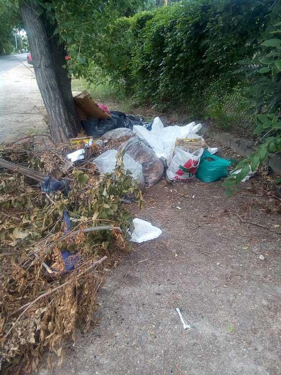 Kommunális hulladék is kerül ki a helyszínre folyamatosan. / Fotó: hulladekvadasz.hu