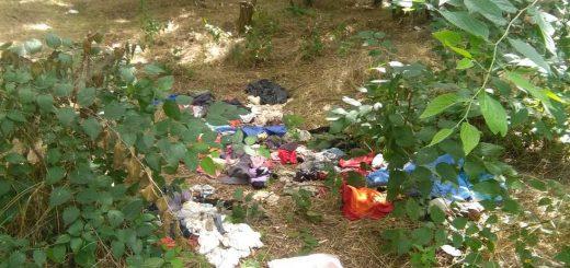 Gyáli kiserdő illegális hulladéklerakatai