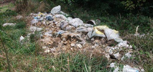 Seregélyes és Zichyújfalu határán környezetgyalázás
