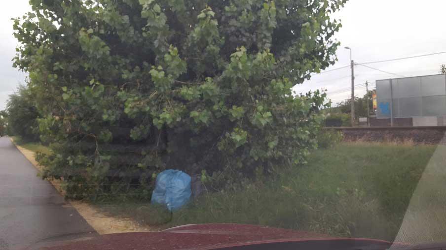 A Vasút utcában több zsák háztartási hulladék. / Fotó: hulladekvadasz.hu