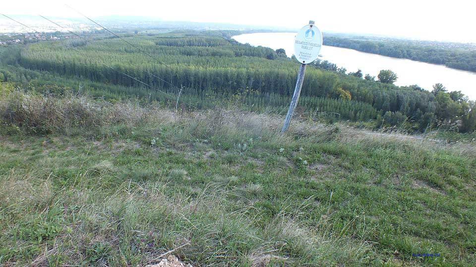Érden a természetvédelmi területet jelző tábla. Háttérben a Duna. / Fotó: hulladekvadasz.hu