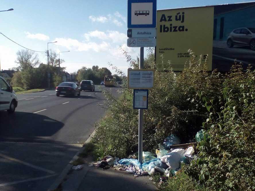 Az Antalháza buszmegállóban Volán és BKK buszok is megállnak. / Fotó: hulladekvadasz.hu