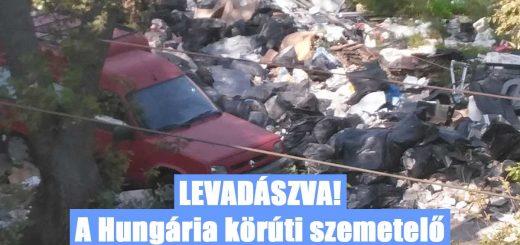 Levadászva! - Tettenérés hatalmas hulladékhalmok között (videóval)