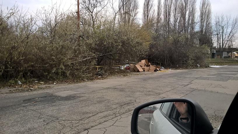 Sajnos sok esetben a szemetelő visszatér a tett színhelyére. / Fotó: hulladekvadasz.hu