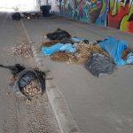 Székesfehérvári elkerülő alatt hulladék kirakodóvásár