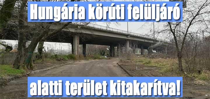 A MÁV nagytakarítása a Hungária körúti felüljáró alatt
