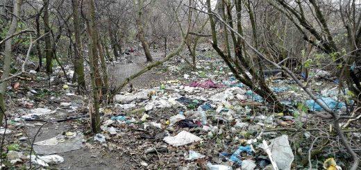 Népligeti hugyálda és pet-palack temető az Üllői úton