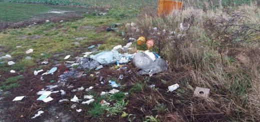 Szekszárdi Palánki híd melletti hulladéklerakat