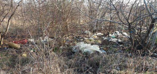 Szemétlerakó Szegeden a Ballagi tó kiskertjeinél