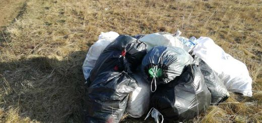 Háztartási hulladék Várpalota határában