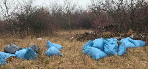 Siófok, Kiliti szőlőhegy illegális zöldhulladék lerakata