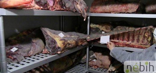 Rohadó húsok! - Lecsapott a Nébih Baranyában
