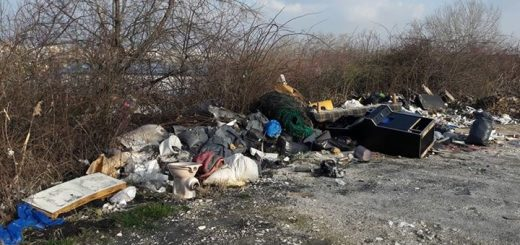 Óbudai hegyoldal hulladékai a Bécsi út közelében