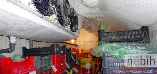 5 tonna élelmiszert vont ki a Nébih