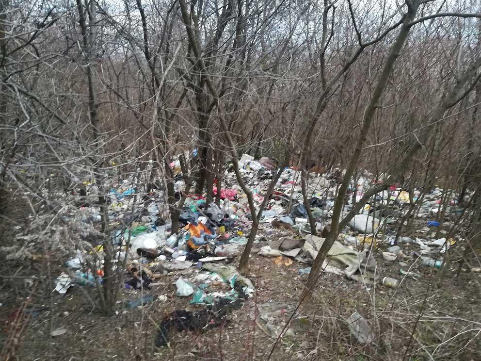 Kicsit beljebb haladva a domboldalon ezt láthatjuk a fák közt. / Fotó: hulladekvadasz.hu